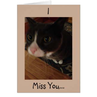 Cat I Miss You Greeting Card