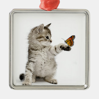 Cat image for Premium Square Ornament