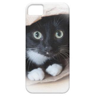 Cat in a bag iPhone 5 cover