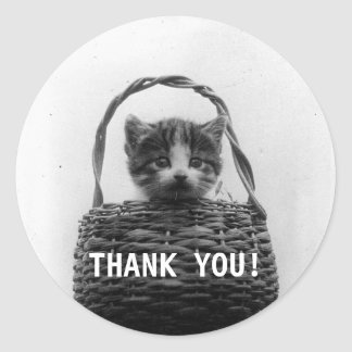 Cat in a Basket Vintage Photo - Thank you Round Sticker