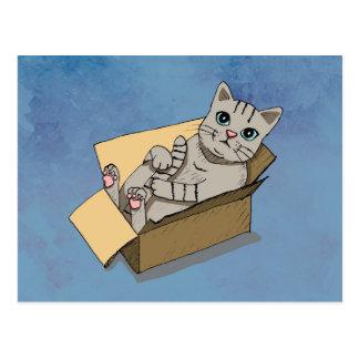 Cat in a Cardboard Box Postcard