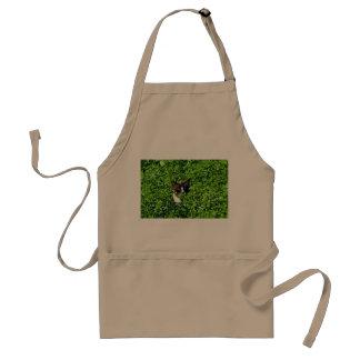 Cat in a Field Apron