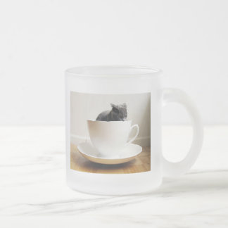 cat-in-a-mug