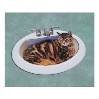 Cat in a Sink Poster