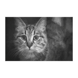 Cat in Black and White Stretched Canvas Print