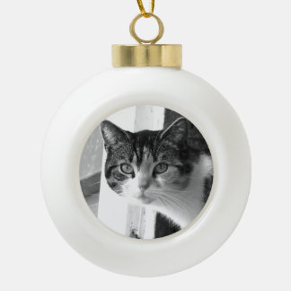 Cat in black and white ornament