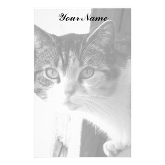 Cat in Black and White Personalized Stationery