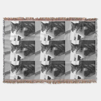 Cat in black and white throw blanket