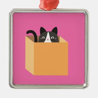 Cat in  box Silver-Colored square decoration