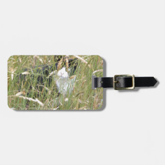 cat in Grass Bag Tag