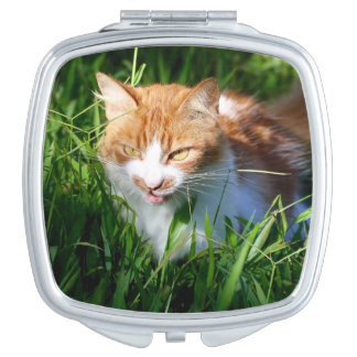 Cat in grass compact mirrors