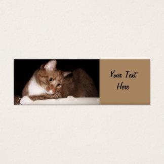 Cat in Soft Light Mini Business Card