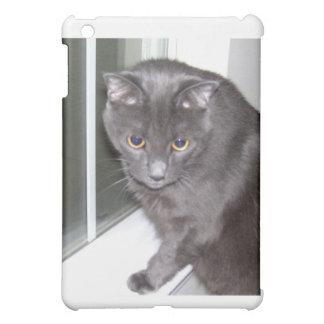 Cat in the Window iPad Mini Cases
