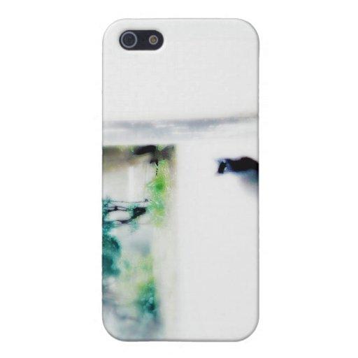Cat in Venice, iphone case Cases For iPhone 5