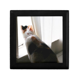 Cat in Window Small Square Gift Box
