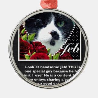 Cat: Jeb Silver-Colored Round Decoration