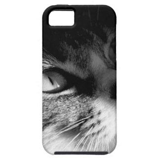 cat.jpg iPhone 5 covers