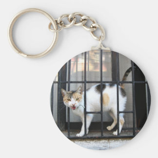 Cat Basic Round Button Key Ring