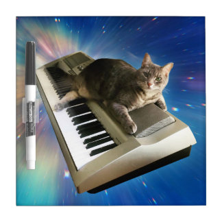 cat keyboard dry erase board