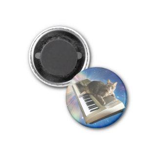 cat keyboard magnet