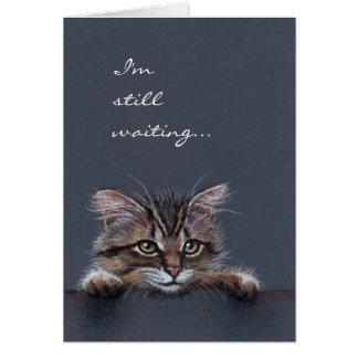 Cat Kitten I'm Still Waiting Greeting Card