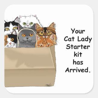 Cat Lady Starter Kit Square Sticker