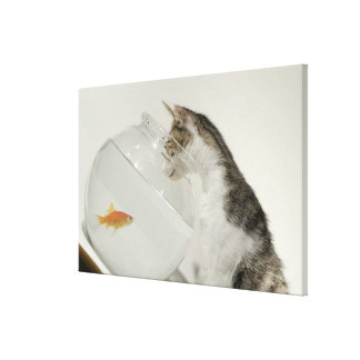 Cat looking at fish in fishbowl canvas print