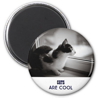 Cat looking outside 6 cm round magnet