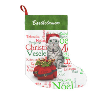 Cat Lover Santa Kitty with Mouse Christmas