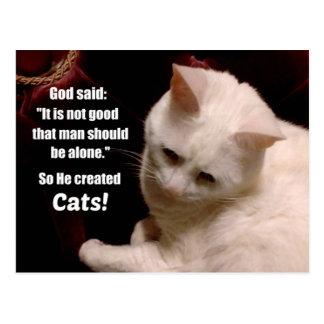 Cat lover sentiment. postcard