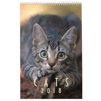 Cat Lover Wall Calendar 2018