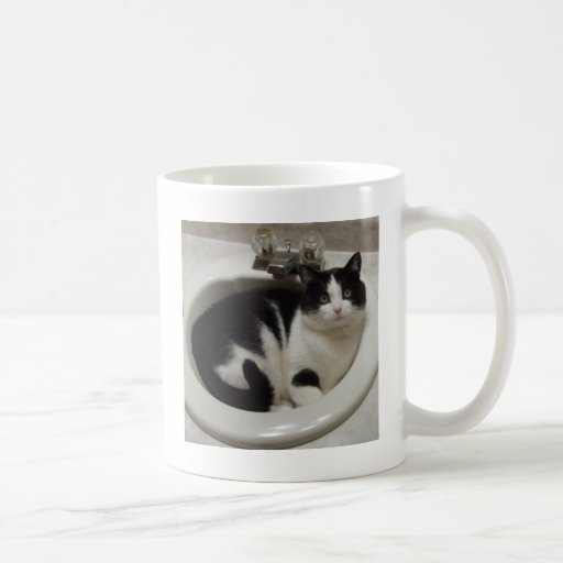 Cat lovers delight coffee mugs