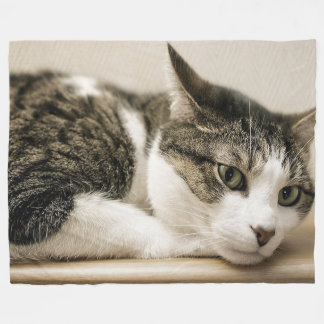 Cat Lovers Fleece Blanket