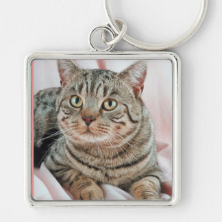 CAT LOVERS KEY CHAIN
