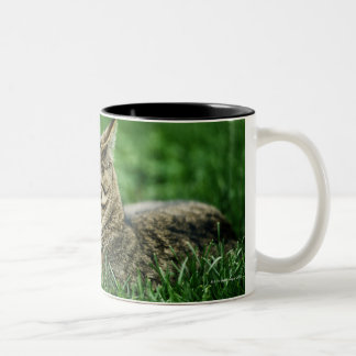 Cat lying in grass Two-Tone coffee mug