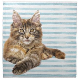 Cat, Maine Coon Napkin
