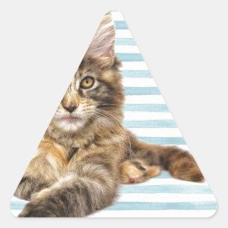 Cat, Maine Coon Triangle Sticker
