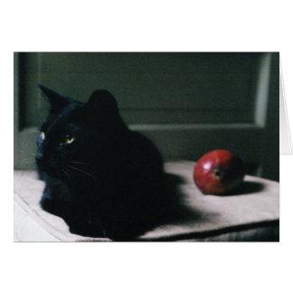Cat & Mango card