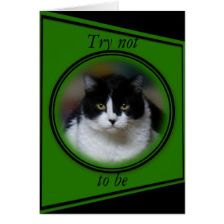 Cat, Max 1- customize for any occasion Card