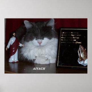 Cat Meditatiing  print or poster - Aiyach