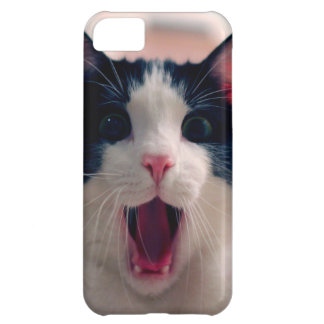 Cat meme - cat funny - funny cat memes - memes cat iPhone 5C case