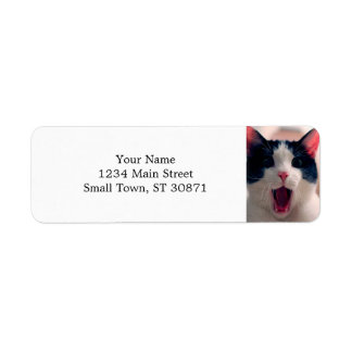 Cat meme - cat funny - funny cat memes - memes cat return address label
