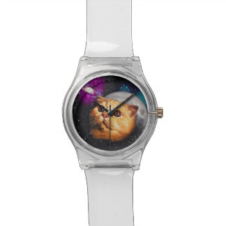 cat moon ,cat and moon ,catmoon ,moon cat watch