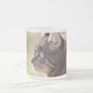 cat frosted glass mug