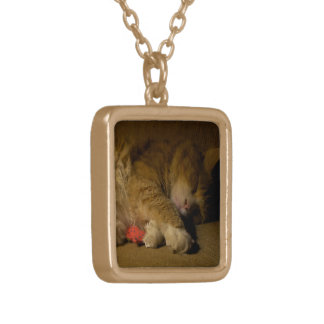 Cat Nap Gold Plated Necklace