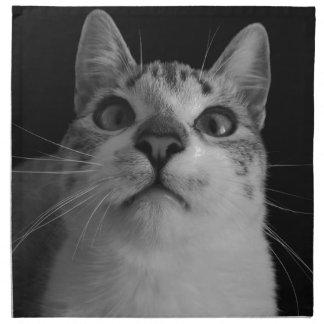cat napkin