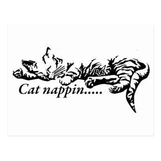 Cat nappin.......... postcard
