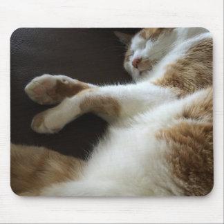 Cat naps on sofa mouse pad