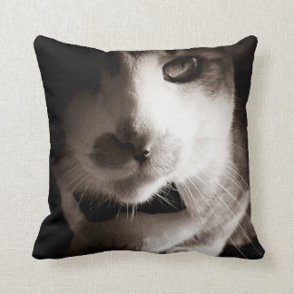 Cat noir cushion