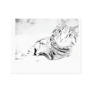 Cat of pencil design stretched canvas print